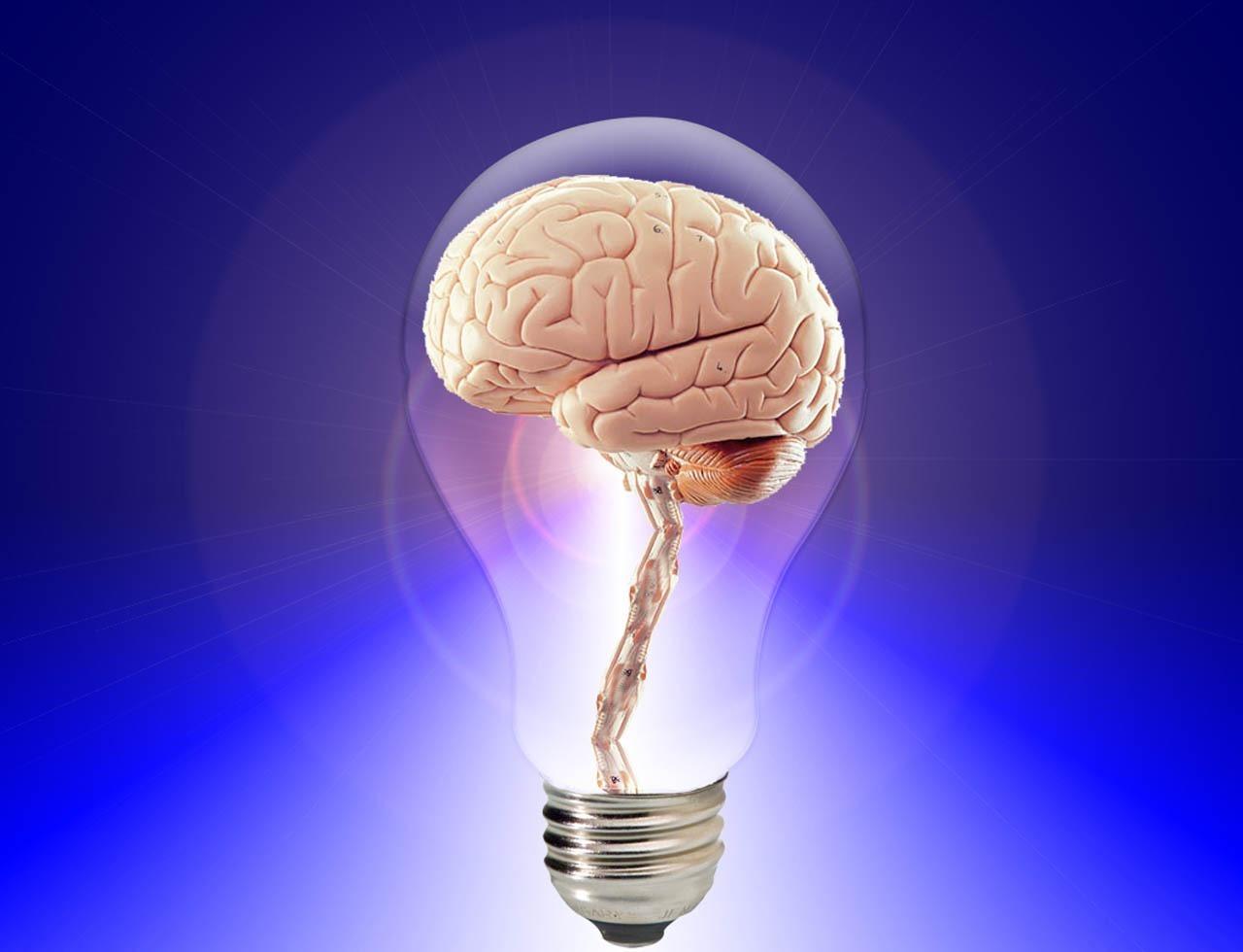 brain in a light bulb