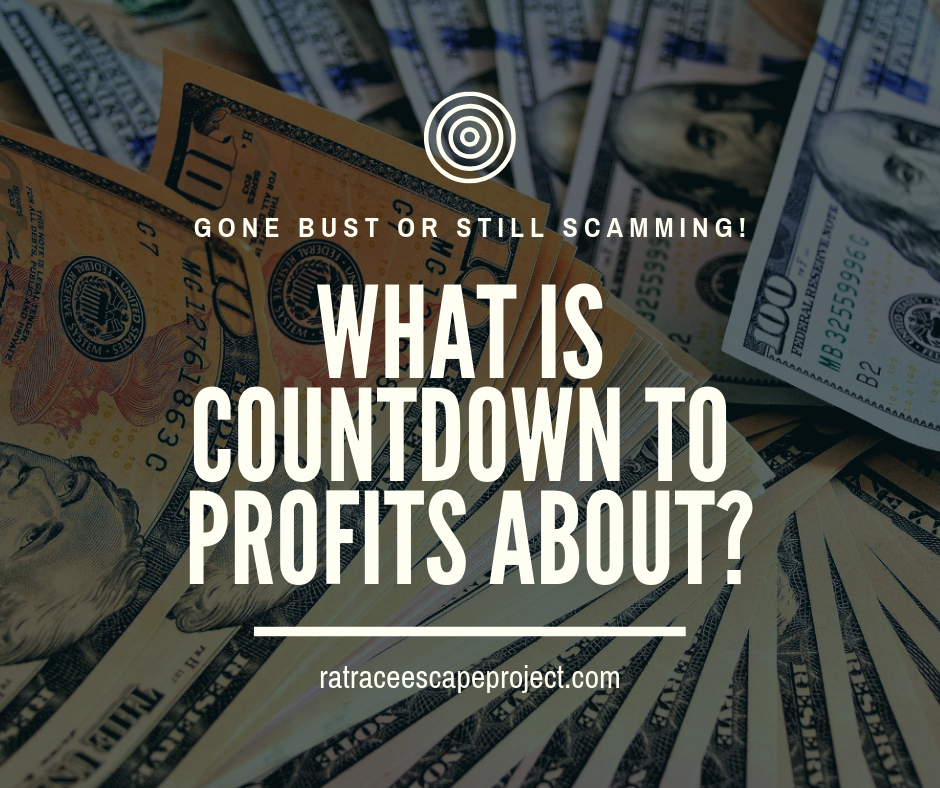 What is Countdown to Profits About